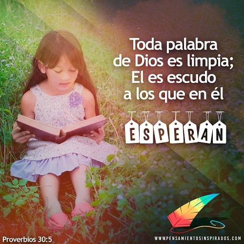 """Proverbios 30:5 """"Toda palabra de Dios es limpia; El es escudo a los que en él esperan."""""""