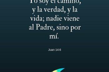 Yo soy el camino, y la verdad, y la vida; nadie viene al Padre, sino por mí