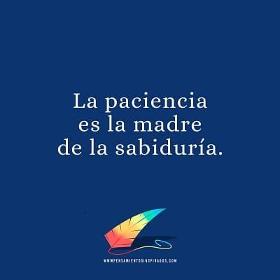 La paciencia es la madre de la sabiduría
