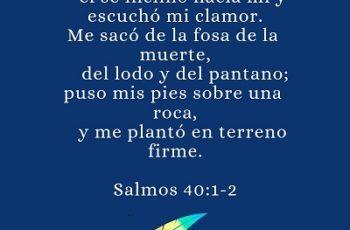 Puse en el Señor toda mi esperanza; él se inclinó hacia mí y escuchó mi clamor