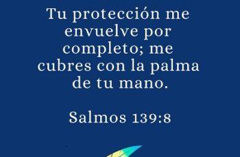Tu protección me envuelve por completo; me cubres con la palma de tu mano