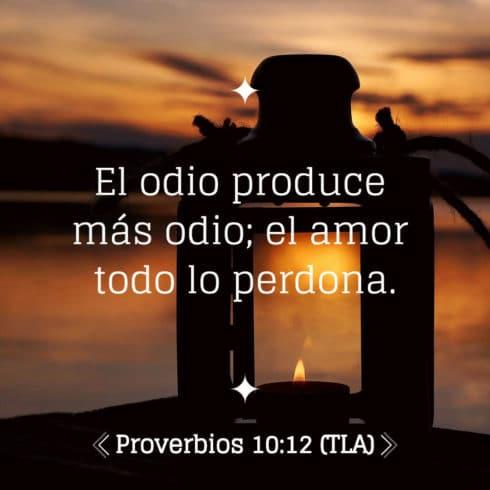 Proverbio 10:12
