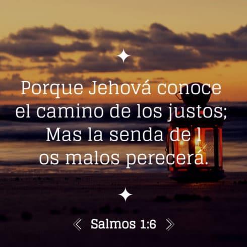 Salmo 1:6