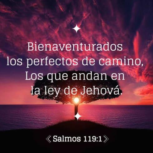 Salmo 119:1 – 10