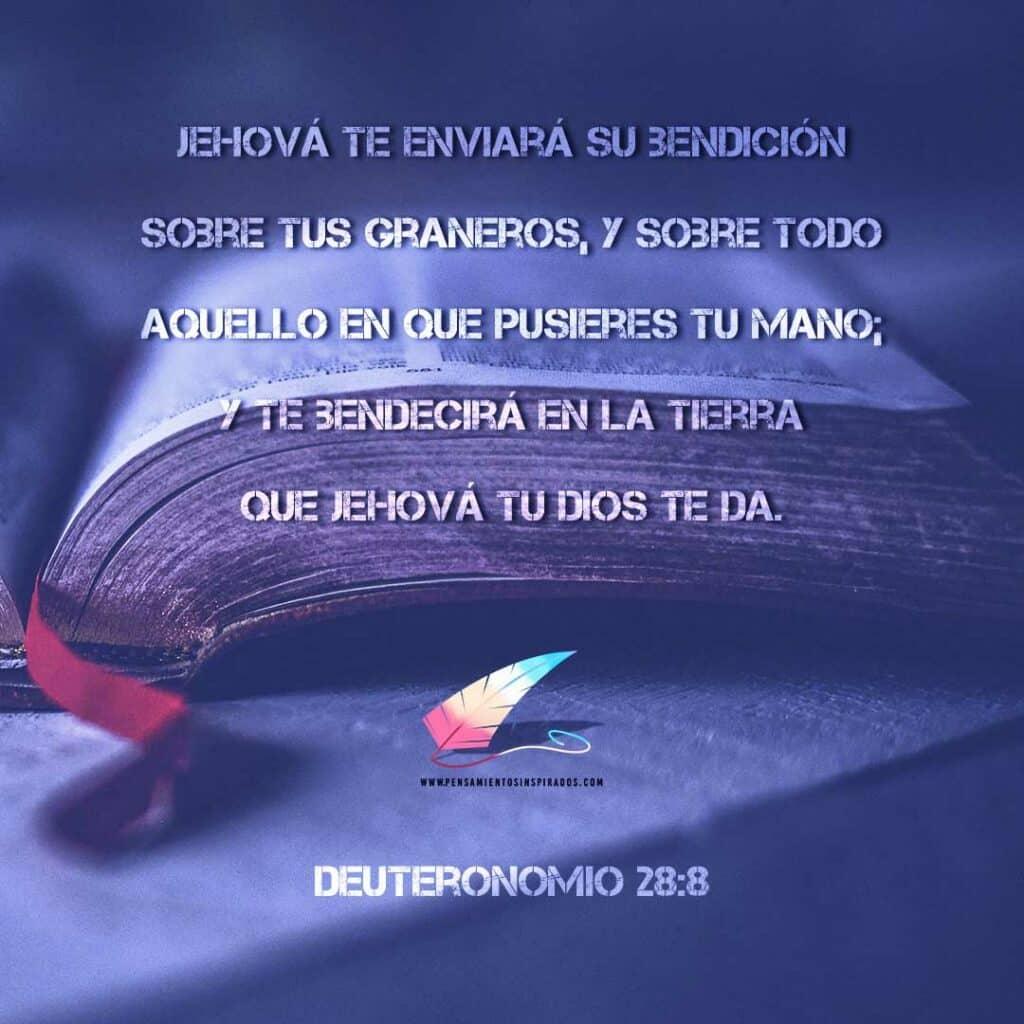 Deuteronomio 28:8 Jehová te enviará su bendición sobre tus graneros, y sobre todo aquello en que pusieres tu mano; y te bendecirá en la tierra que Jehová tu Dios te da.