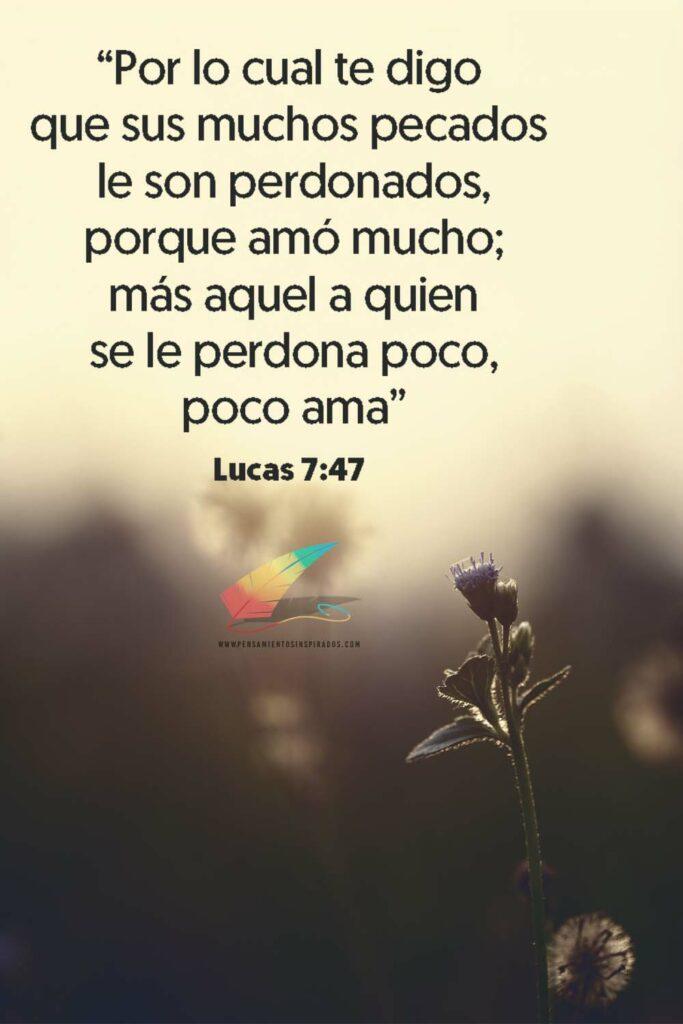 Lucas 7:47 Por lo cual te digo que sus muchos pecados le son perdonados, porque amó mucho; más aquel a quien se le perdona poco, poco ama.